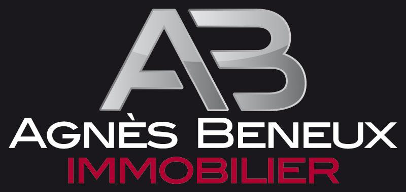 Agnès Beneux immobilier