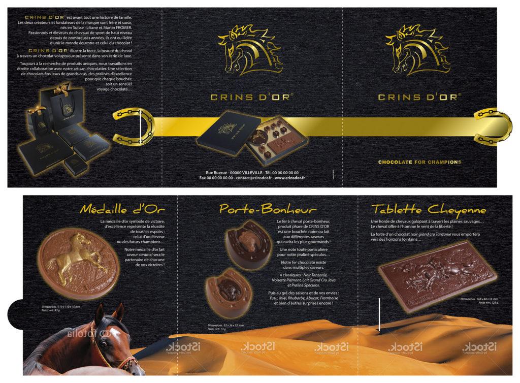Crins d'Or plaquette 3 volets 210x210