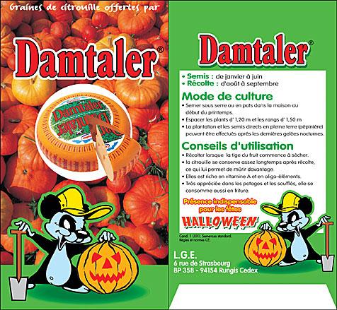 Damtaler sachet citrouille